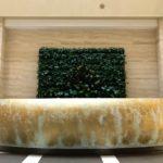 Фитостена из живых растений, 6 кв.м. в БЦ Леонардо
