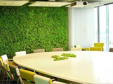 Озеленення мохом, стабілізовані рослини