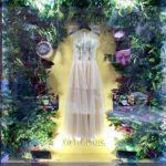 Оформление витрины из стабилизированных растений, ArtRamus бутик и творческое пространство