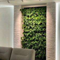 Зеленая стена с автополивом