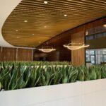 Озеленення офісу в БЦ царський