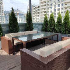 Озеленення даху тераси, Туї в кашпо з бетону